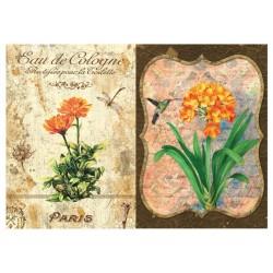 carta di riso per decoupage 33x48 etichetta profumo con fiori vintage