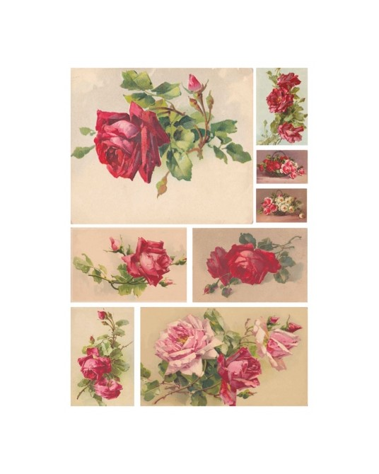 carta di riso per decoupage 33x48 illustrazioni d'epoca rose rosse