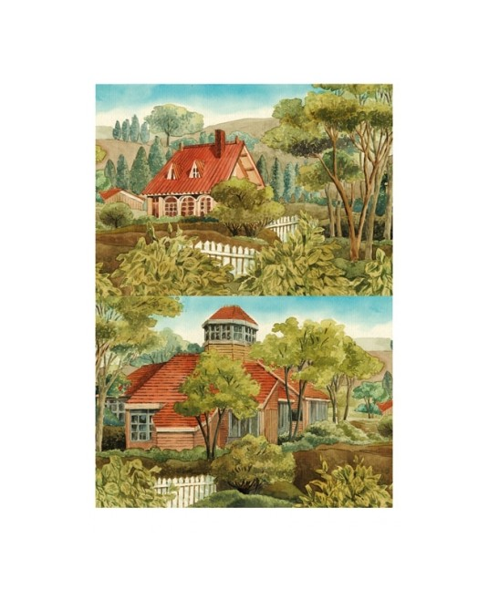 carta di riso per decoupage 34,5x49,5 cottage