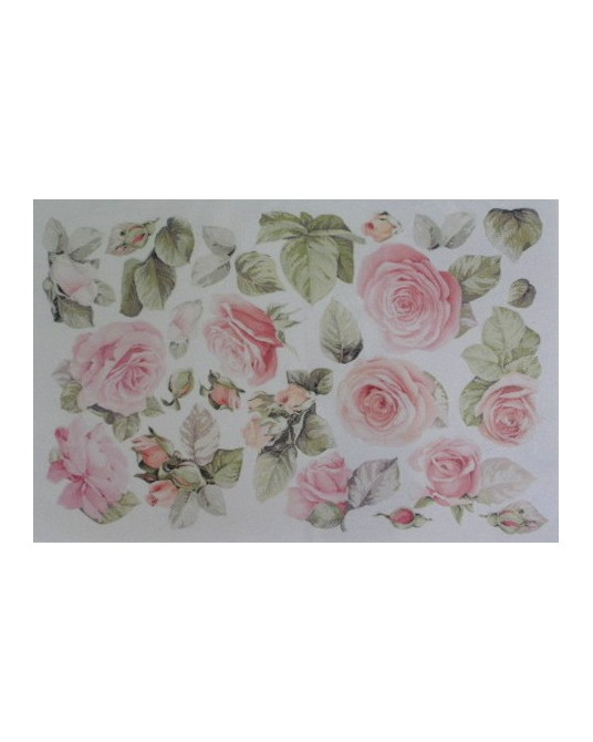 gomma crepla fommy 20x30 h 2 mm rose